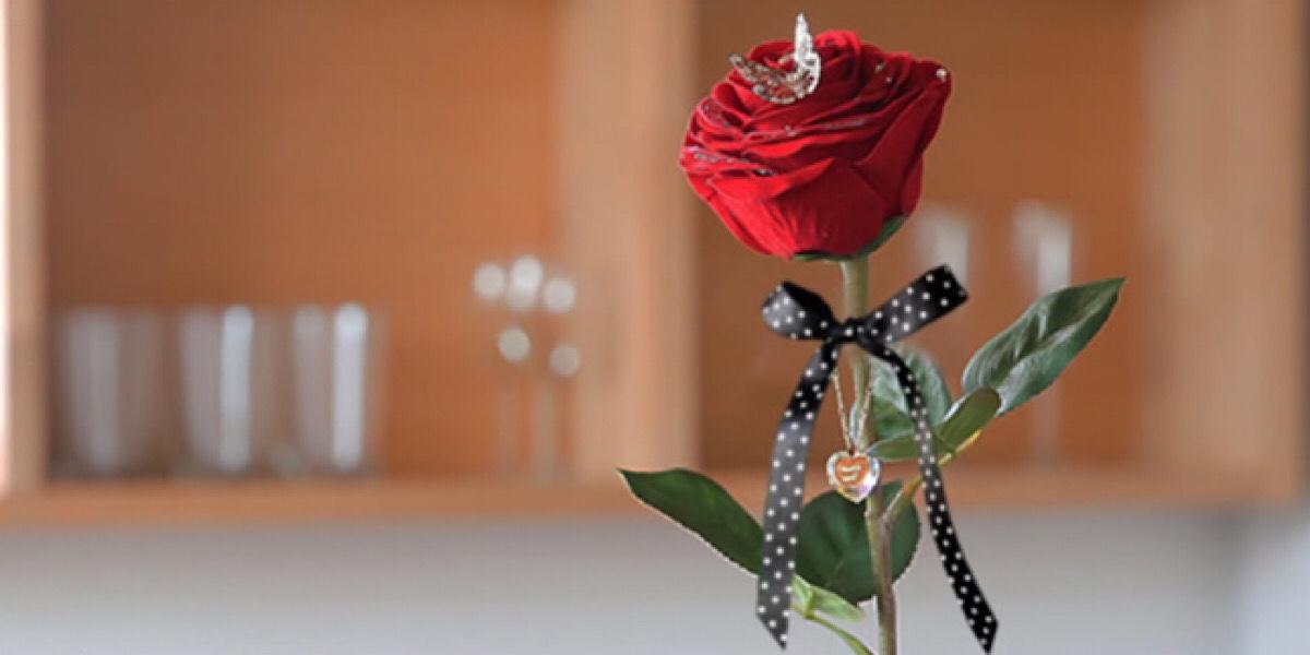 赤いバラのイメージ画像(参照:メリアルーム)